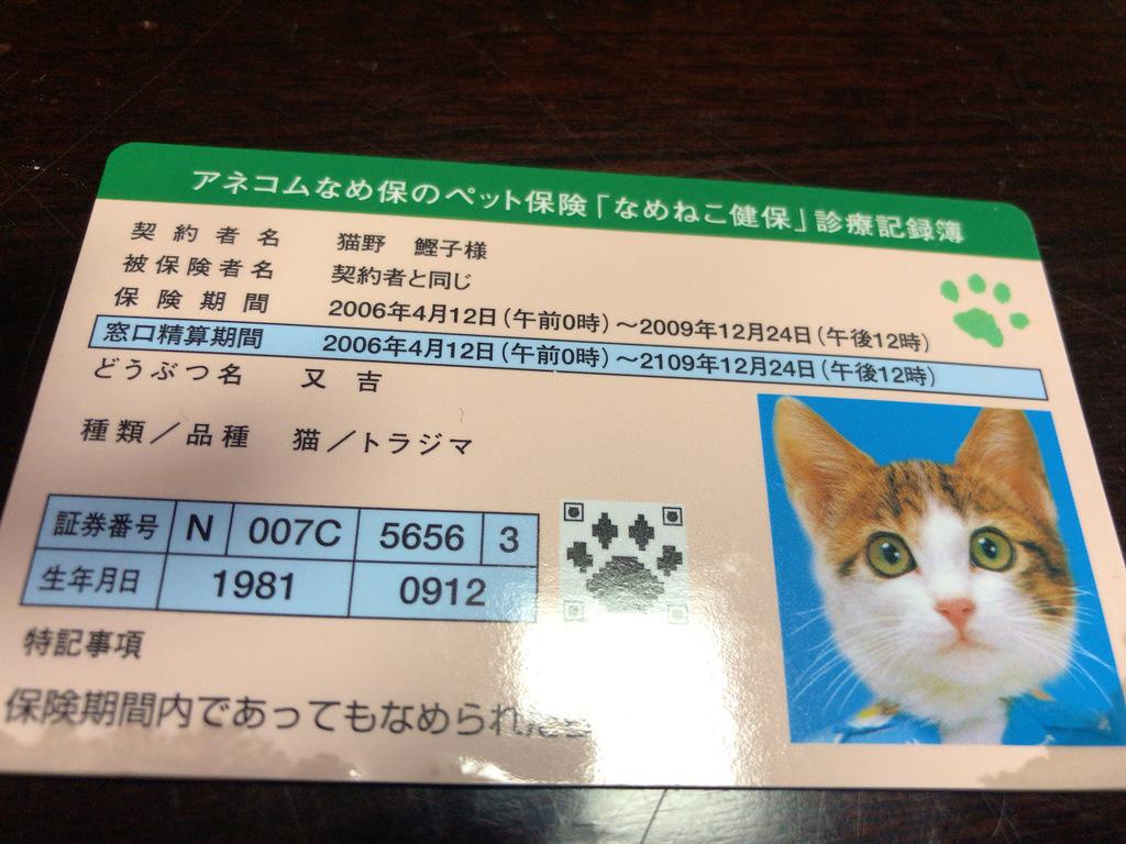 IMG_9230.JPG